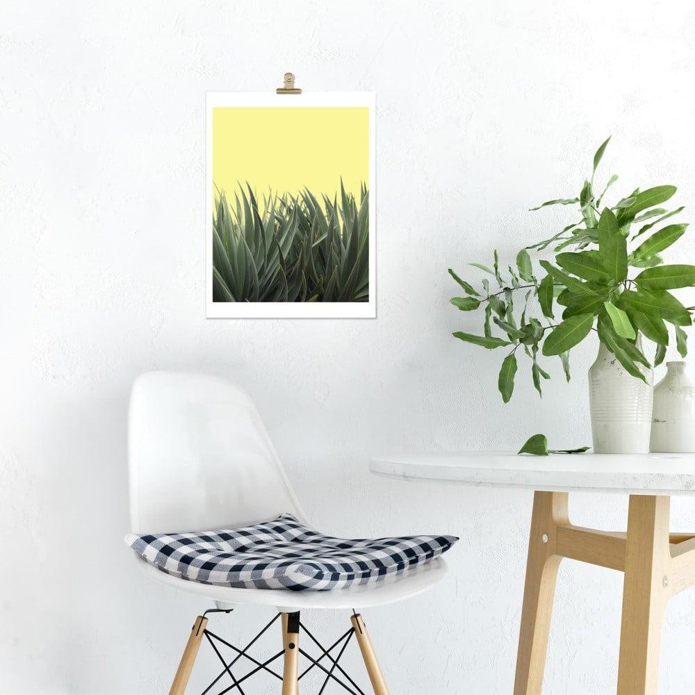 plakat hf living botanic hide 30x40 cm bonami. Black Bedroom Furniture Sets. Home Design Ideas