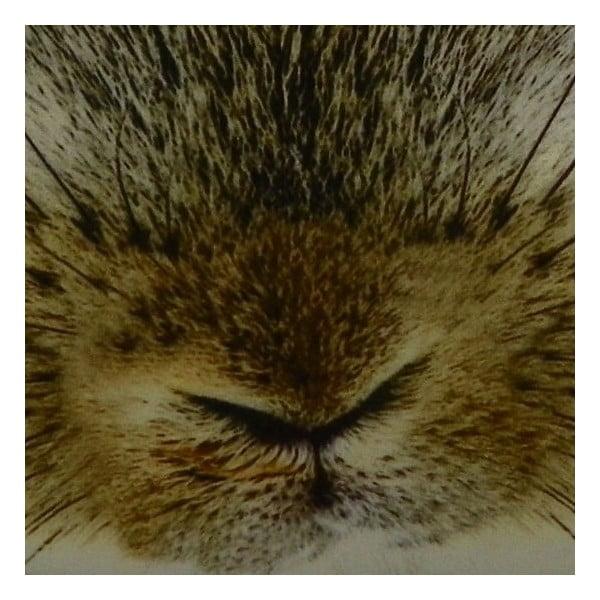 Poduszka Rabbit, 50x50 cm