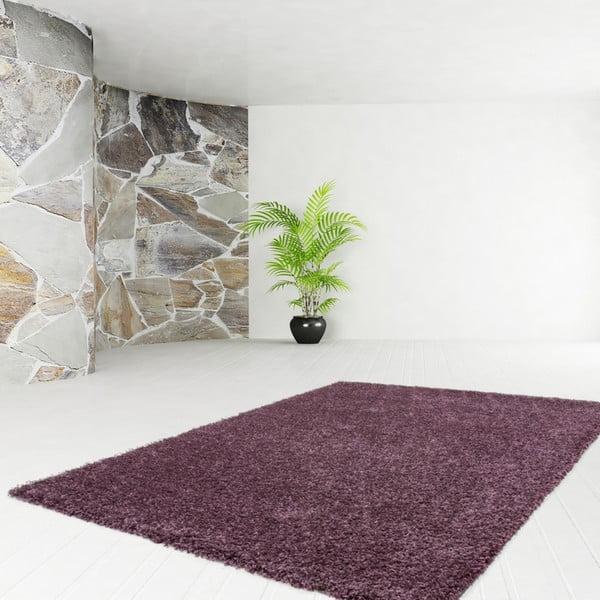 Dywan Solar Violet, 120x160 cm
