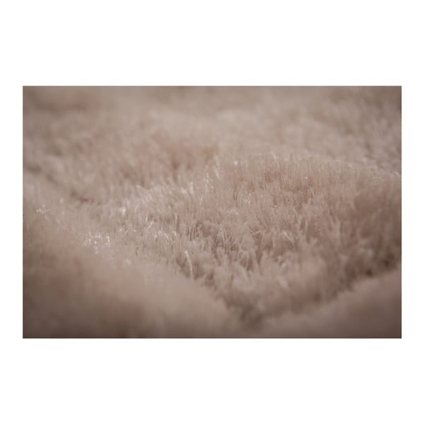 Dywan Solstice 529 Cream, 170x120 cm