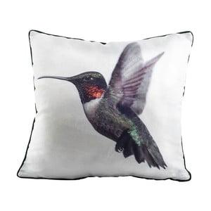 Poduszka Fisura Hummingbird, 45x45 cm