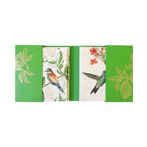 Zestaw   10 kart w kopercie Eden Project by Portico Designs