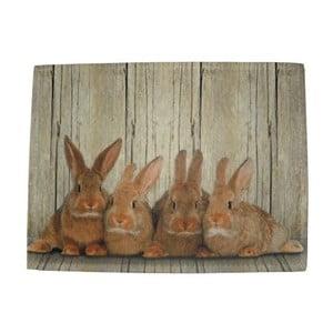 Mata stołowa Damily Brown Rabbits, 40x30 cm