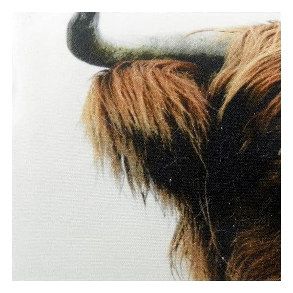 Poduszka Scottish Highlander 50x35 cm