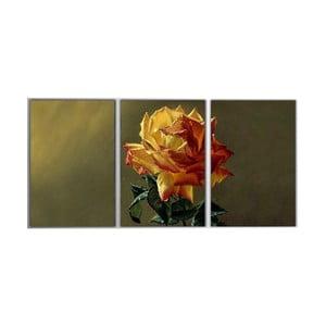 Trzyczęściowy obraz Yellow Rose, 45x90 cm