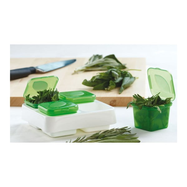Pojemnik na zioła Frozen Herb