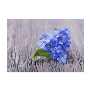 Dywan winylowy Blue, 52x75 cm