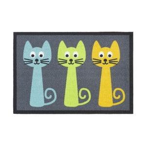 Wycieraczka Hamat Cats, 40x60 cm