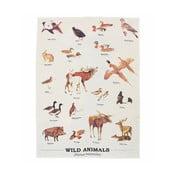 Ścierka bawełniana Gift Republic Wild Animals Multi, 50x70 cm