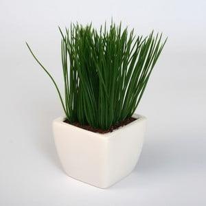 Sztuczna roślina w doniczce Cesped
