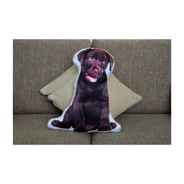 Poduszeczka Adorable Cushions Czekoladowy labrador