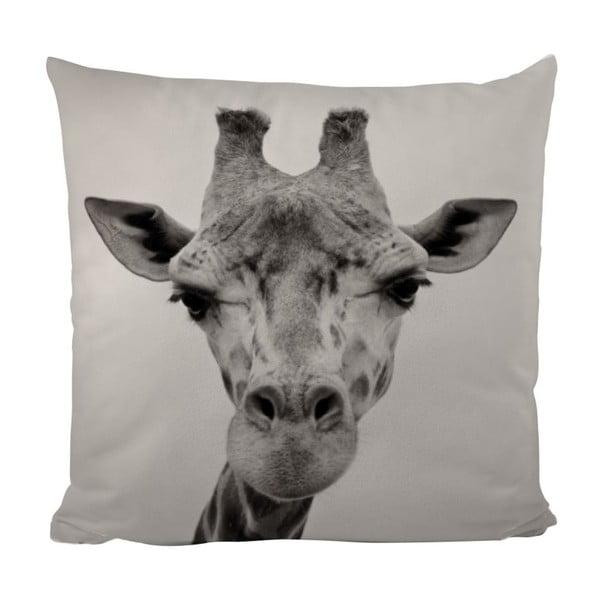 Poduszka Giraffe Gifi, 50x50 cm