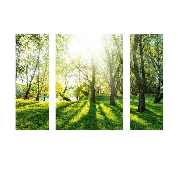 Obraz samoprzylepny Summer Forest