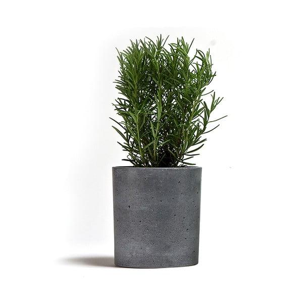 Doniczka betonowa Spicepot 13