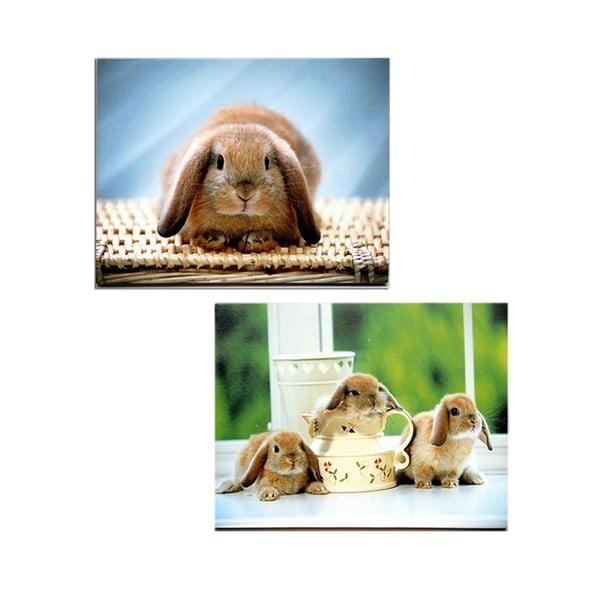 Zestaw 2 obrazów na drewnie Rabbit, 30x40 cm