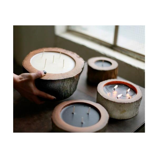 Palmowa świeczka Legno o zapachu lilii wodnej, 80 godzin palenia