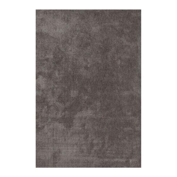 Dywan Ladylike 478 Platin, 160x230 cm