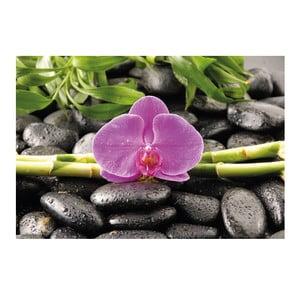 Fotoobraz Orchidea, 51x81 cm
