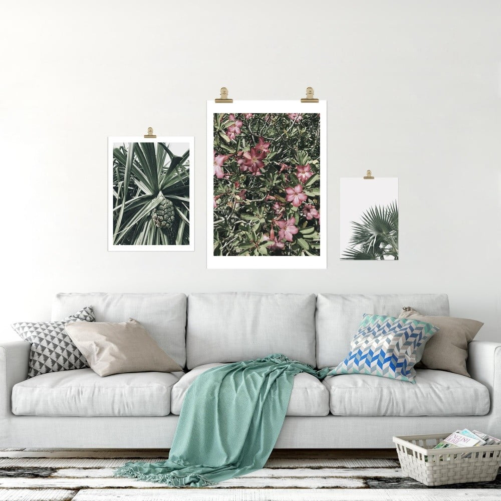 plakat hf living botanic palm 30x40 cm bonami. Black Bedroom Furniture Sets. Home Design Ideas