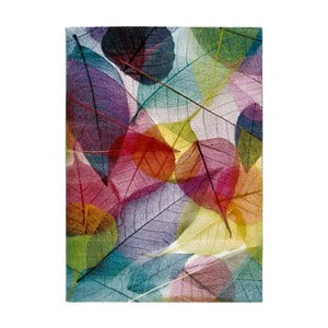 Dywan Universal Colors Multi, 160x230 cm