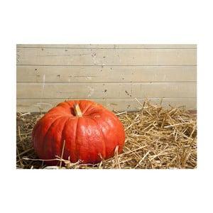 Dywan winylowy Pumpkin, 52x75 cm