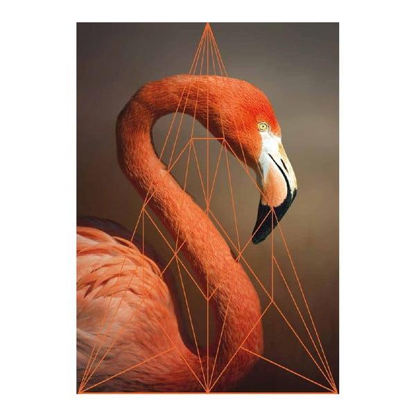 Plakat Flamingo Portrait, A3