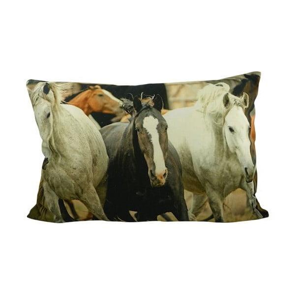 Poduszka Horses Free 60x40 cm