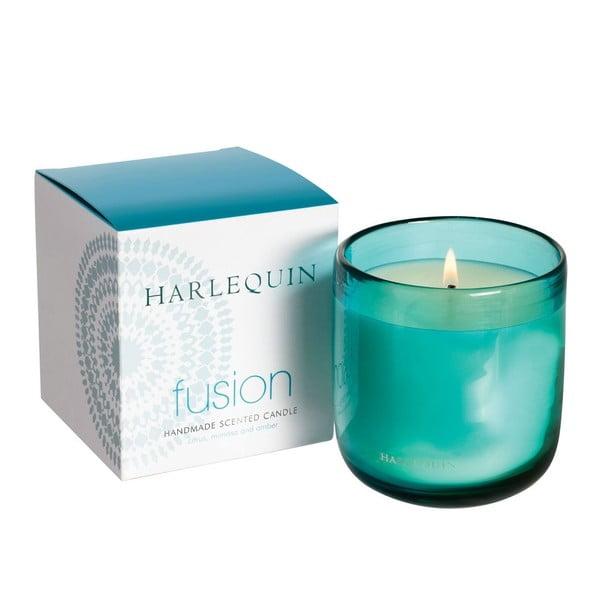 Świeczka Harlequin, cytrusy z mimozą