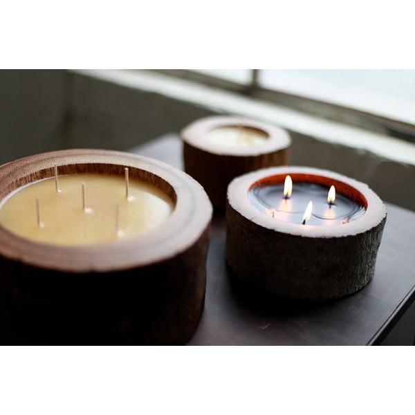 Palmowa świeczka Legno Palma o zapachu lilii wodnej, 40 godz.