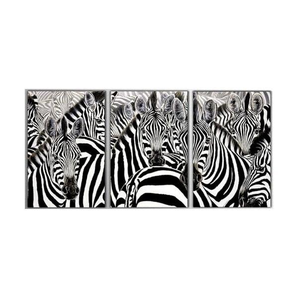 Trzyczęściowy obraz Zebras, 45x90 cm
