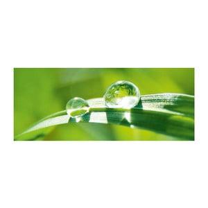 Szklany obraz Pure Nature 50x125 cm