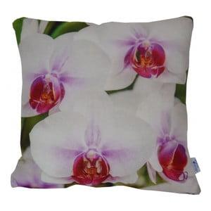 Poduszka Orchids, 42x42 cm