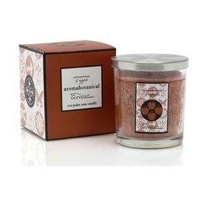 Świeczka z wosku palmowego o zapachu cynamonu i jabłka Aromabotanical Glass, czas palenia16h