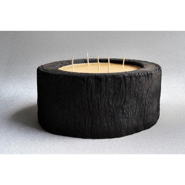 Palmowa świeczka Legno Bee z woskiem pszczelim, 140 godzin palenia