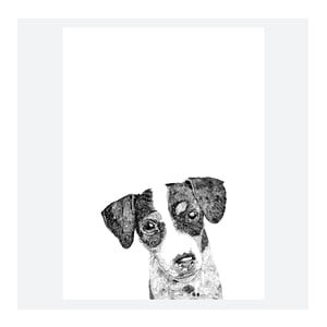 Plakat Ziggy The Jack Russell, 30x40 cm