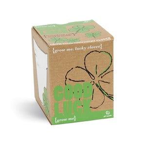 Zestaw do uprawy roślin z ziarnami koniczyny Gift Republic Good Luck