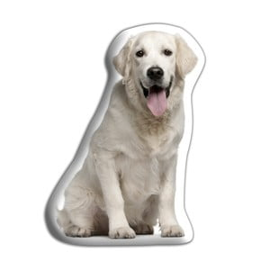 Poduszeczka Adorable Cushions Golden retriever