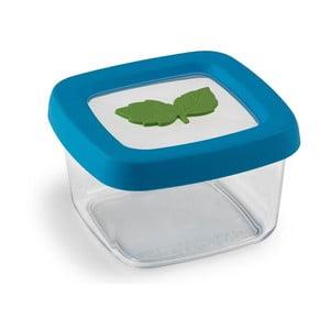 Pojemnik na żywność Snips Food Container, 0,25 l