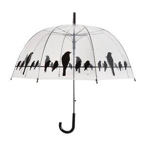 Przezroczysty parasol Cloche Ois