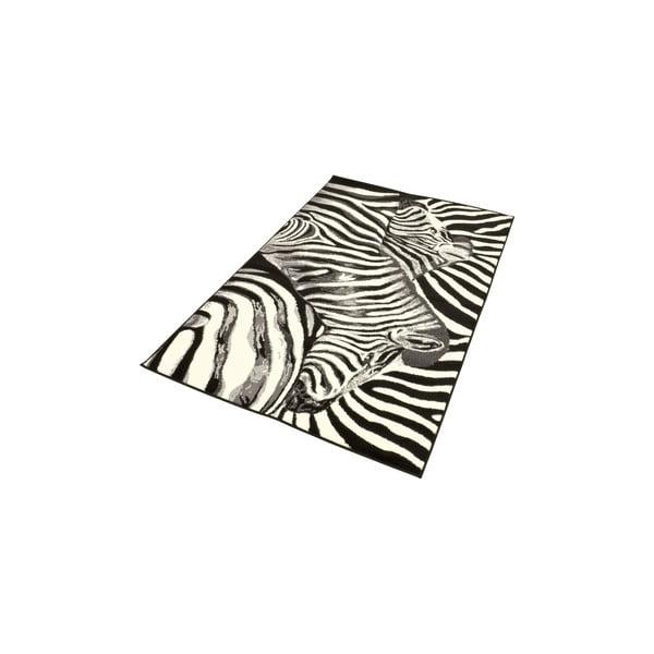 Dywan City & Mix - zebra, 140x200 cm