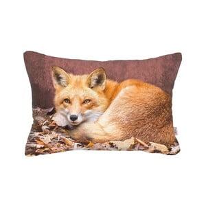 Poszewka na poduszkę Apolena Foxina, 50x31 cm