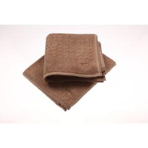 Komplet 2 ręczników U.S. Polo Assn., 50x90 cm
