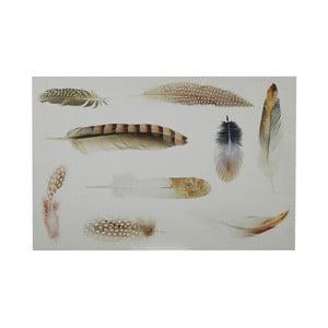 Tablica Feather, 40x60 cm