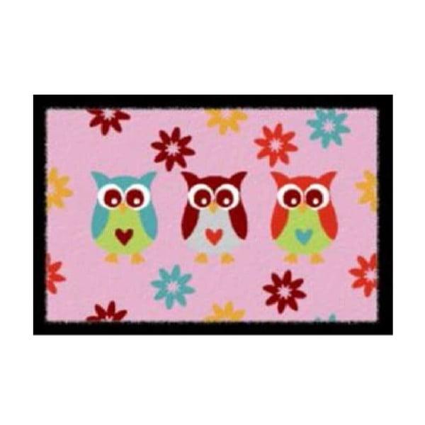 Wycieraczka Pink Owls, 40x60 cm