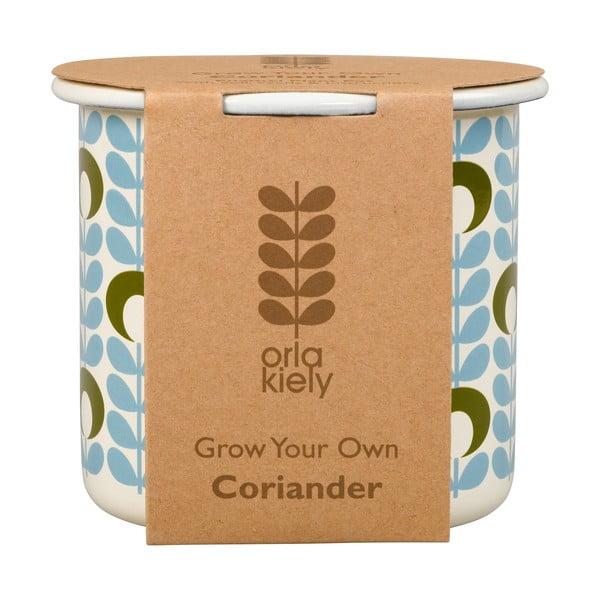 Zestaw doniczki z nasionami kolendra Orla Kiely Grow Your Own
