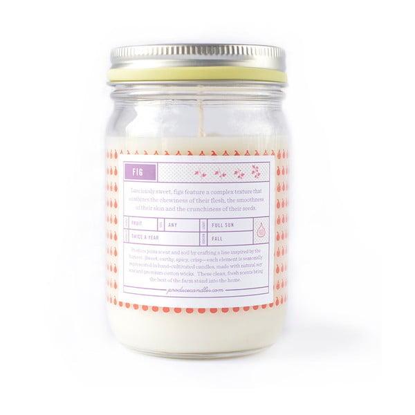 Świeczka o zapachu figi, czas palenia 50-70 godzin