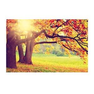 Obraz Jesienna sceneria, 45x70 cm