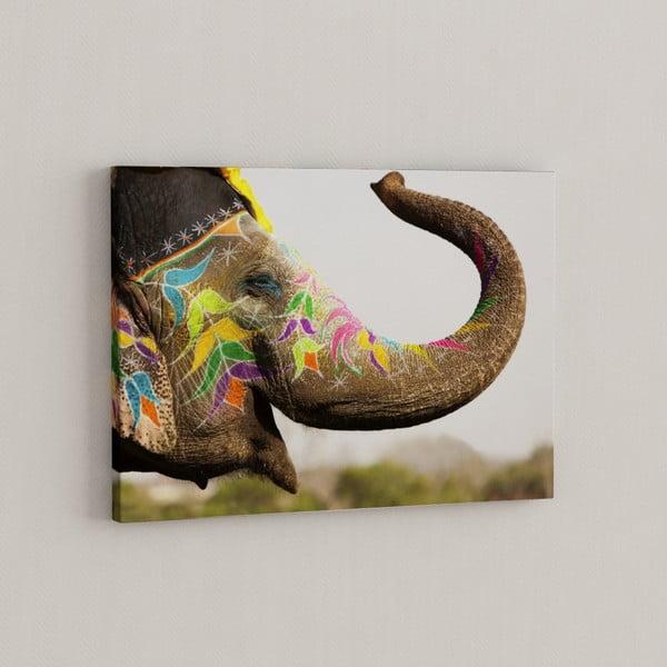 Obraz Szczęśliwy słoń, 50x70 cm