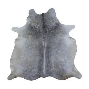 Szara skóra bydlęca, 260x175 cm