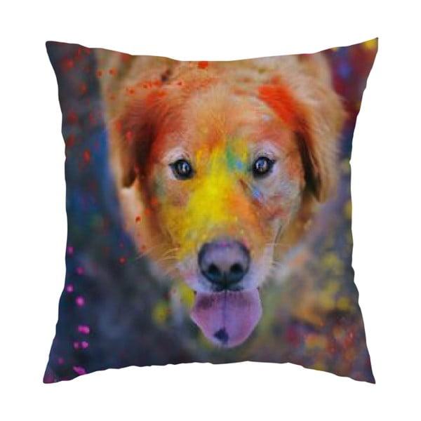 Poduszka Colorful Dog, 40x40 cm